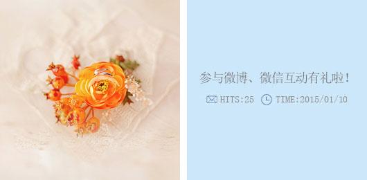 成都婚纱摄影工作室官方微博、官方微信!