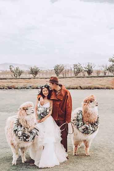 自然清新  小众婚纱照